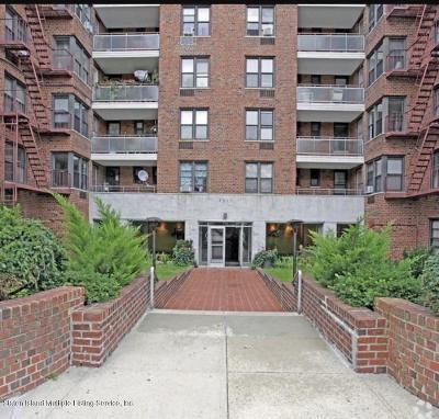 Brooklyn Condo/Townhouse For Sale: 9511 Shore Road #209