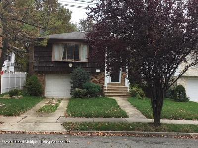Staten Island Single Family Home For Sale: 164 N Railroad Street