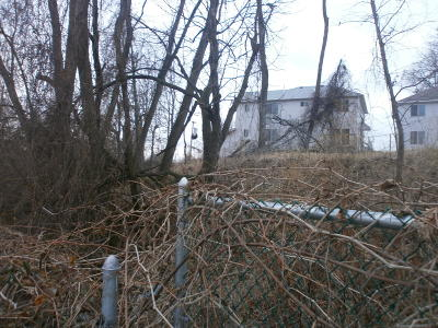 Staten Island Residential Lots & Land For Sale: Chestnut Ave