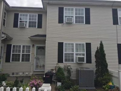 Single Family Home For Sale: 145 Mosel Avenue