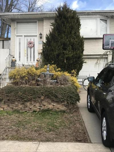 Staten Island Single Family Home For Sale: 47 Pine Terrace