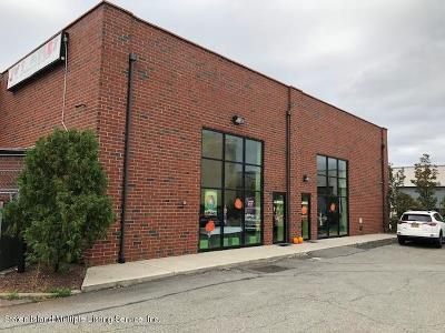 Staten Island Business Opportunity For Sale: 27 Brienna Court