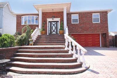 Staten Island Single Family Home For Sale: 238 Merrill Avenue
