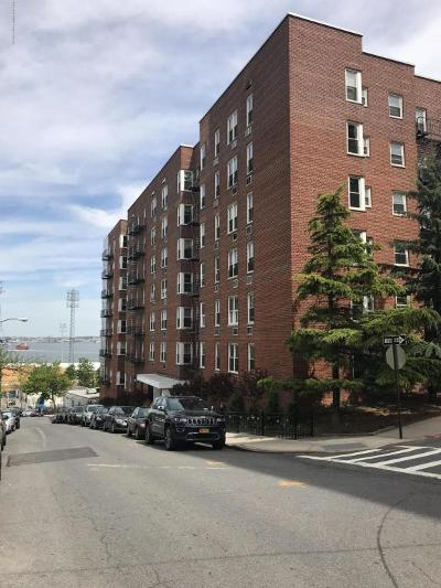Staten Island Co-op For Sale: 36 Hamilton Avenue #3b