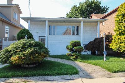 Single Family Home For Sale: 79 Foch Avenue