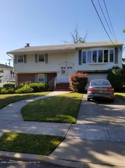 Single Family Home For Sale: 219 Ardsley Street