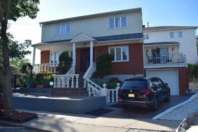 Staten Island Single Family Home For Sale: 234 Todt Hill Road