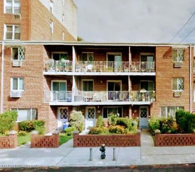 Brooklyn Co-op For Sale: 9464 Ridge Boulevard #3r