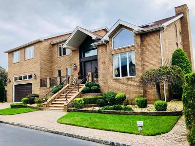 Staten Island Single Family Home For Sale: 25 Nicolosi Drive