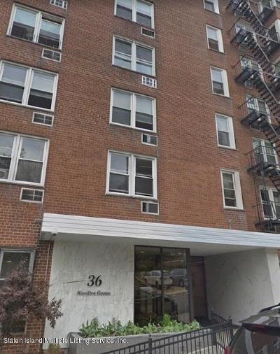 Staten Island Rental For Rent: 36 Hamilton Avenue #2k