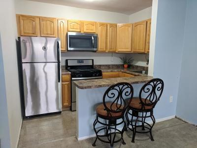 Staten Island NY Condo/Townhouse For Sale: $250,000