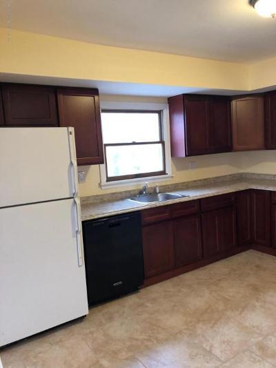 Staten Island Rental For Rent: 110 Moffett Street #Apt 2