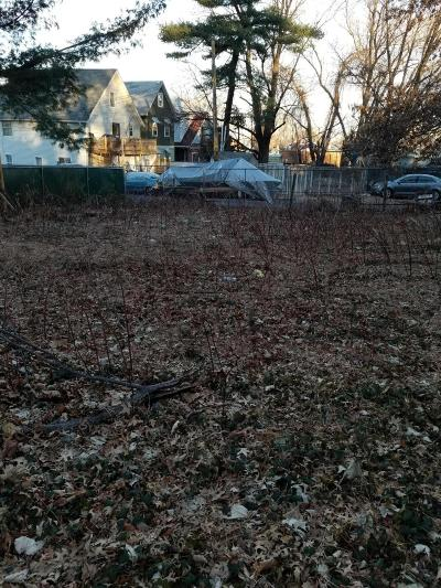 Staten Island Residential Lots & Land For Sale: Alban Street