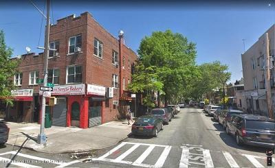 Brooklyn Commercial For Sale: 7023 20th Avenue
