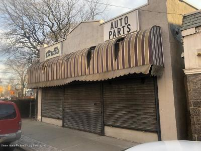 Staten Island Commercial For Sale: 246 Main Street