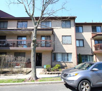 Staten Island Condo/Townhouse For Sale: 18 Kathy Place #1b
