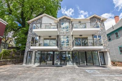 Condo/Townhouse For Sale: 360 Van Duzer Street #2d