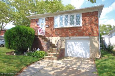 Staten Island Single Family Home For Sale: 151 Tysens Lane