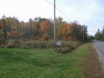 Morristown, Brier Hill Residential Lots & Land For Sale: Riverview St.