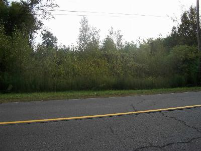 Massena Residential Lots & Land For Sale: Dennison Rd