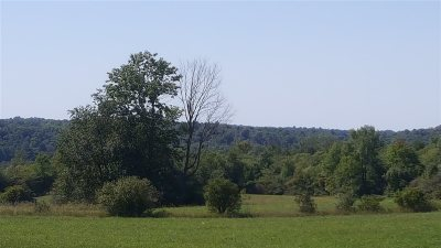 Hermon Residential Lots & Land For Sale: Cr 17