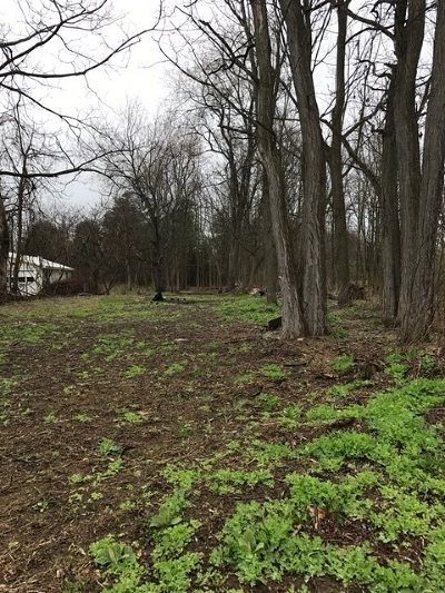 Morristown Residential Lots & Land For Sale: Cr 6