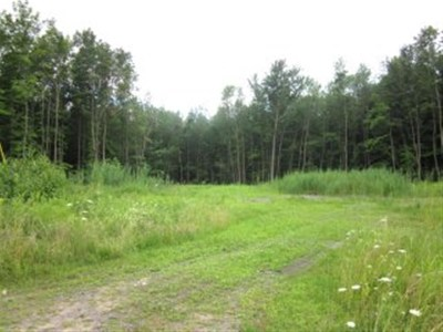 Massena Residential Lots & Land For Sale: 39 River Drive