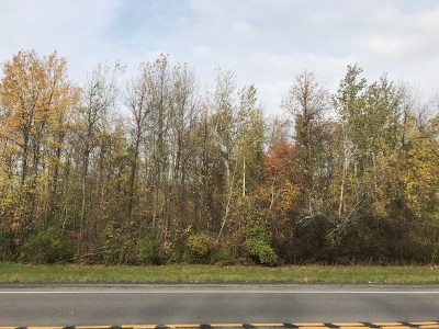 Ogdensburg Residential Lots & Land For Sale: State Highway 37