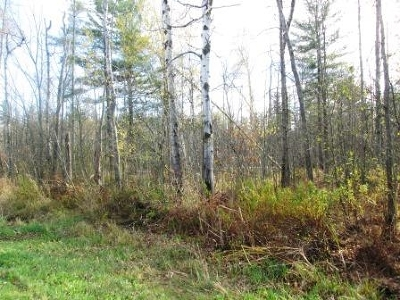 Waddington Residential Lots & Land For Sale: Cr#44