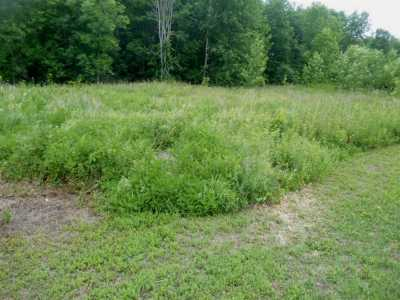 Massena Residential Lots & Land For Sale: County Route 37 (South Racquette River Road)