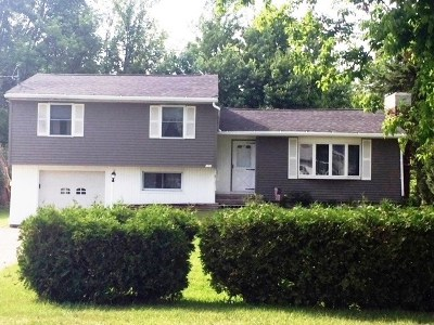 Massena Single Family Home For Sale: 107 Willard Road