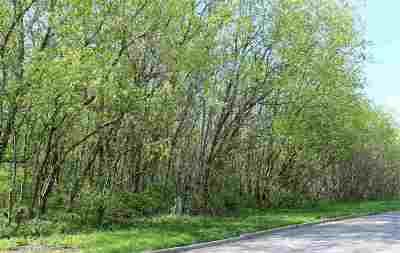 Ogdensburg Residential Lots & Land For Sale: 606 - 612 Anthony Street