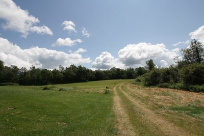 Gouverneur NY Residential Lots & Land For Sale: $18,999