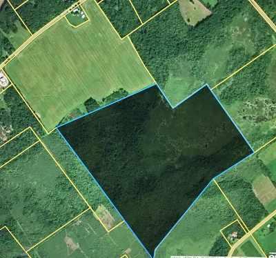 Ogdensburg Residential Lots & Land For Sale: Pinkerton Rd.