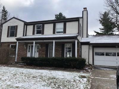 Massena Single Family Home For Sale: 8 Rosebrier Ave.
