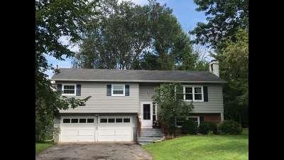 Massena Single Family Home For Sale: 5 Windsor Rd