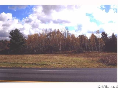 Alexandria Bay Residential Lots & Land For Sale: Nys Rt. 12