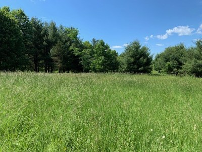 Residential Lots & Land For Sale: O0 Blue Pike Drive/Private