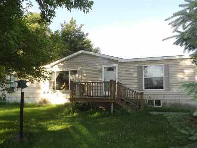 Gouverneur Single Family Home For Sale: 66 Little York