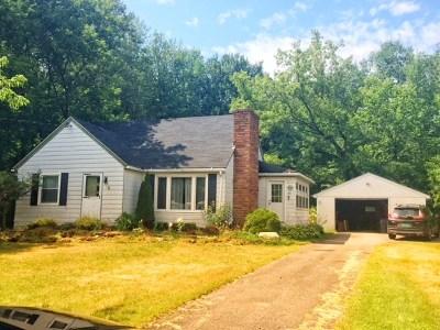 Massena Single Family Home For Sale: 83 Willard Road