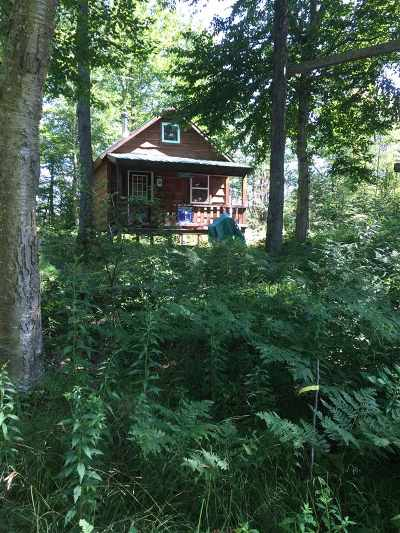 Cranberry Lake Single Family Home For Sale: 746 Tooley Pond Rd