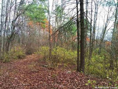 Saugerties Residential Lots & Land For Sale: Route 212