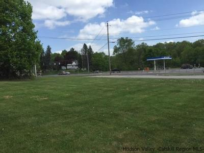 Commercial Lots & Land For Sale: 3509 Us Highway 9w Highway