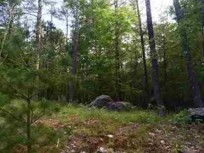 Saugerties NY Residential Lots & Land For Sale: $99,900