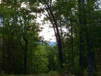 Saugerties NY Residential Lots & Land For Sale: $199,900