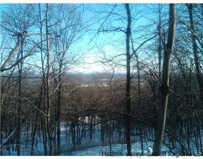 Bloomingburg Residential Lots & Land For Sale: Shawanga Lodge Road