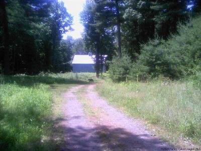 Kerhonkson Single Family Home For Sale: 155 Cedar Drive