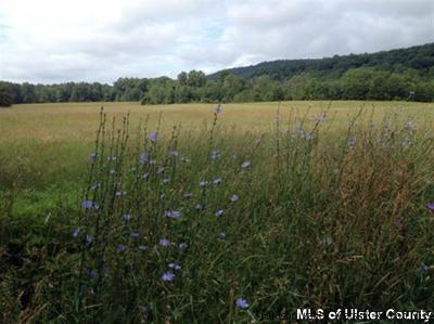 Saugerties Commercial Lots & Land For Sale: 30 Beaverkill Road