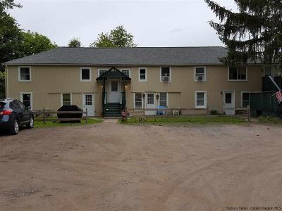 Kerhonkson Multi Family Home For Sale: 251 Samsonville Rd. Road