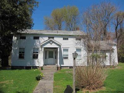 Kingston Single Family Home For Sale: 813 Flatbush Rd.